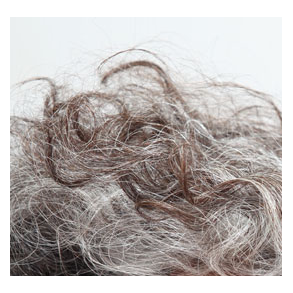 Modent hår